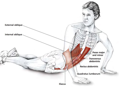Abdominal Stretches – Stuart Hinds Performance Therapy
