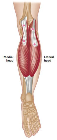 Trigger Point Therapy - Gastrocnemius