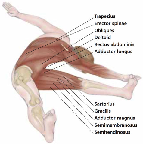 Strengthening Obliques Trigger Point Therapy