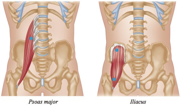 Psoas Trigger Points