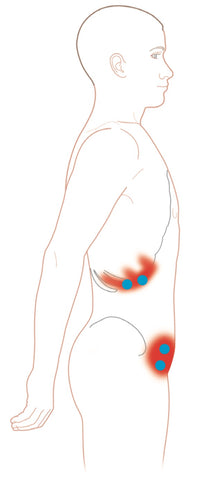 External Oblique Muscles Trigger Points