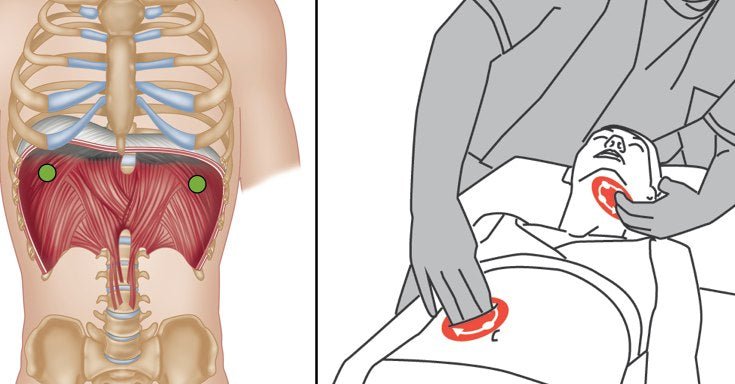 Trigger Point Therapy Diaphragm And Breathing Niel