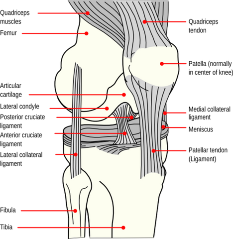 Treating Patellar Trigger Points
