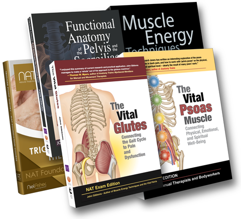 Muscle Energy Techniques + Vital Glutes/Pelvis/Psoas Courses + Trigger Point Theory (15.5 CEUs)