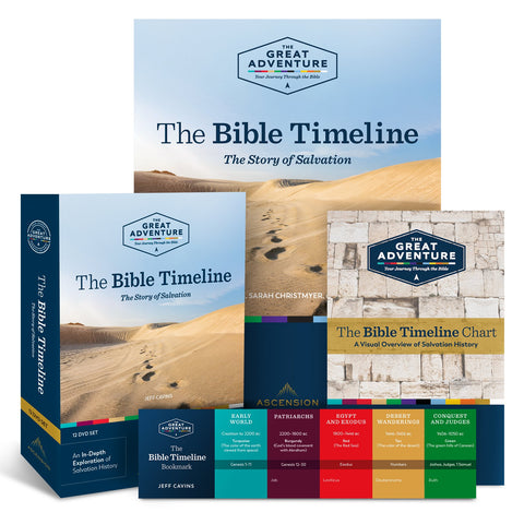 Bible Timeline The Story of Salvation Starter Pack