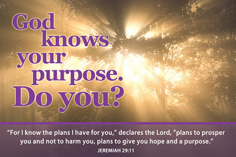 Small Poster - God Knows Your Purpose