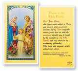HOLY FAMILY LAMINATED HOLY CARD