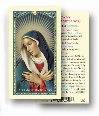 OUR LADY OF DIVINE MERCY HOLY CARD
