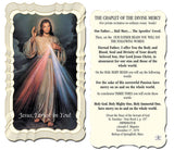 Chaplet of the Divine Mercy Holy Card