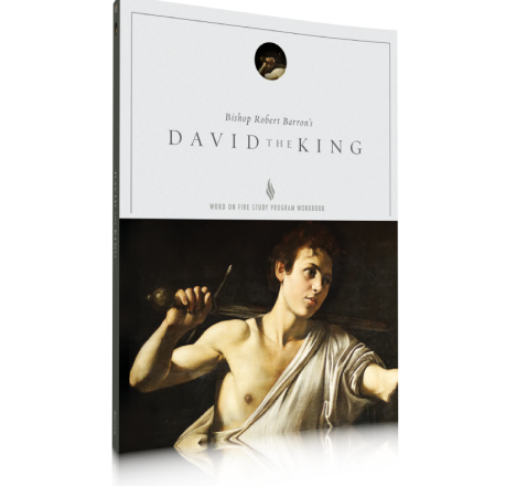 David the King Study Guide