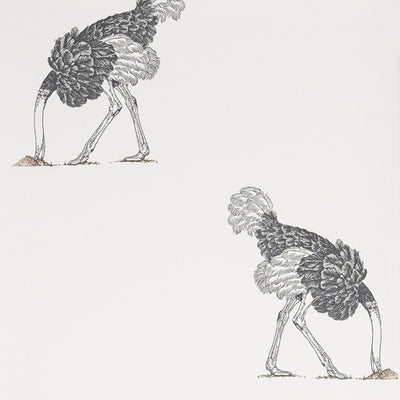 Beware The Moon, Ostrich, Pencil on Bone, Large