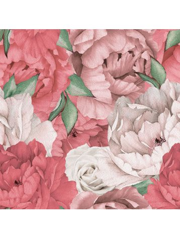 Papermint - Paeonia (3m)