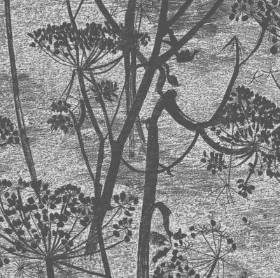 Cow Parsley - Charcoal