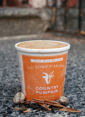 Country Pumpkin Gelato- Sweetened with Coconut Sugar!