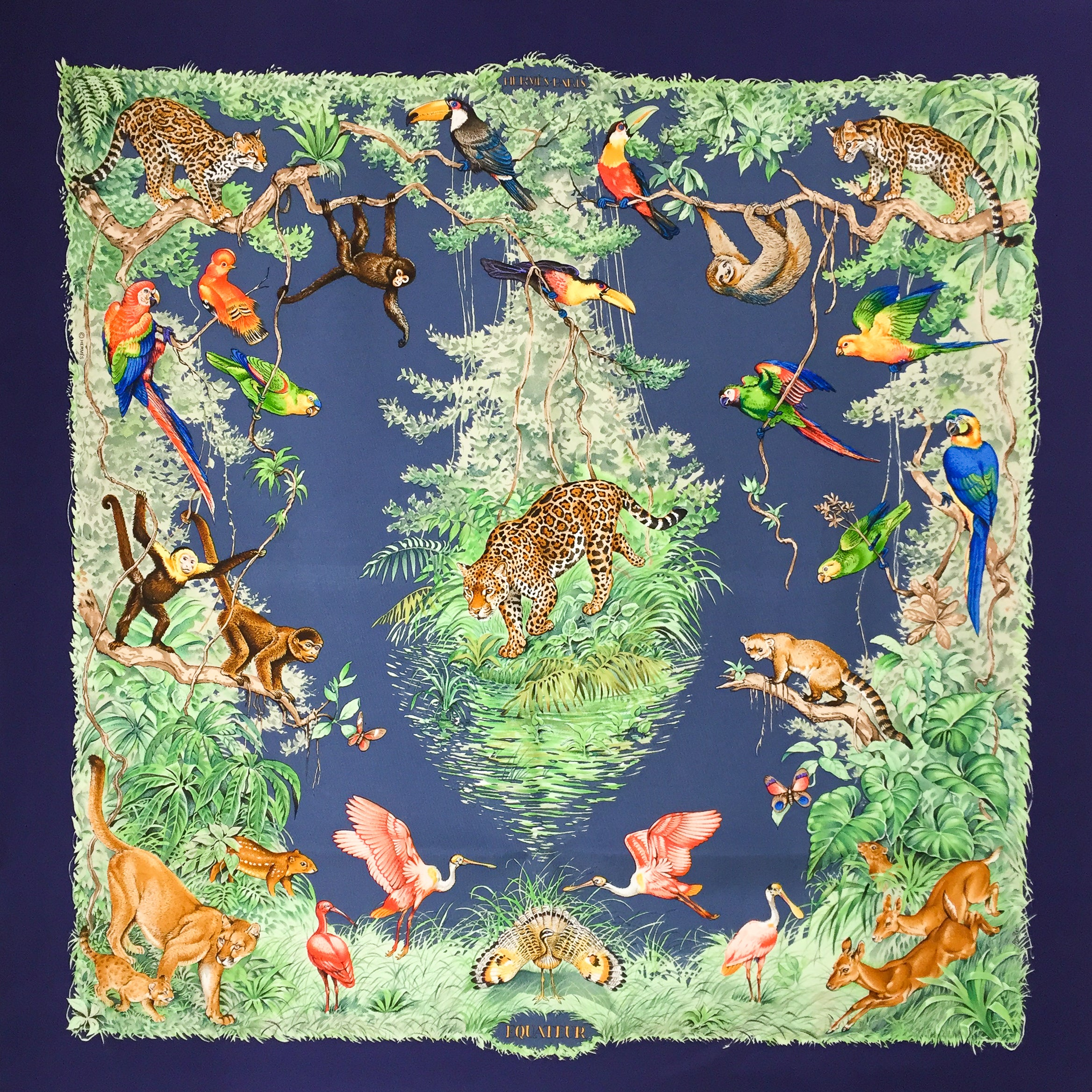 90227a1ec245 ... purchase hermes silk scarf equateur by robert dallet 1c224 235f9 ...