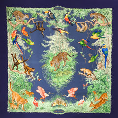 Hermes Silk Scarf Equateur by Robert Dallet