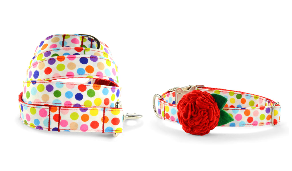 New! It's My Birthday Bloom Collar and Leash Set w/ Red Bloom