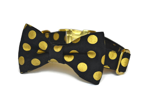 Black And Gold Polka Dot Bow Tie Dog Collar (Large Dots) w/ Gold Hardware