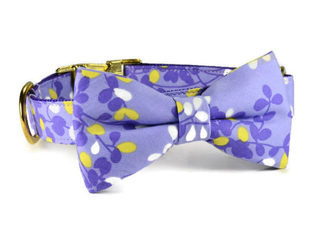 bow tie dog collar, dog bow tie collar, bow tie for dog