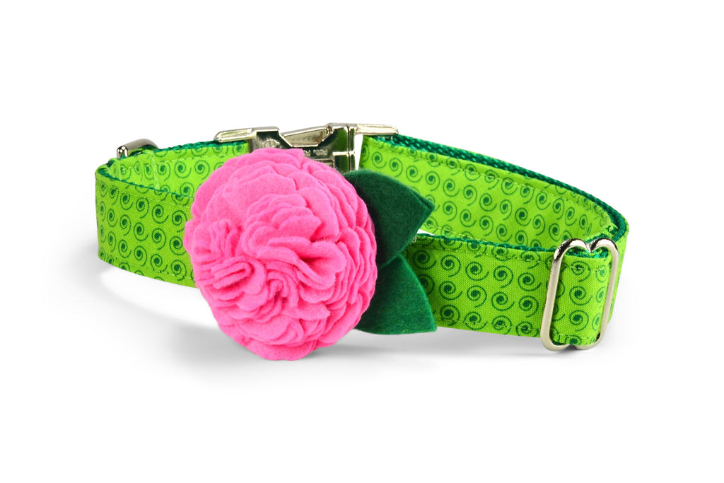 Lime Squiggles Bloom Dog Collar w/ Carnation Bloom