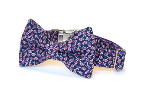 New! The Fiona Bow Tie Dog Collar