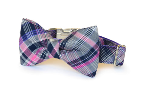 New! The Madison Bow Tie Dog Collar