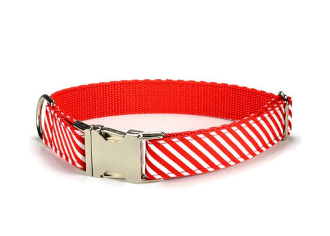 Candy Cane Bloom Collar and Leash Set