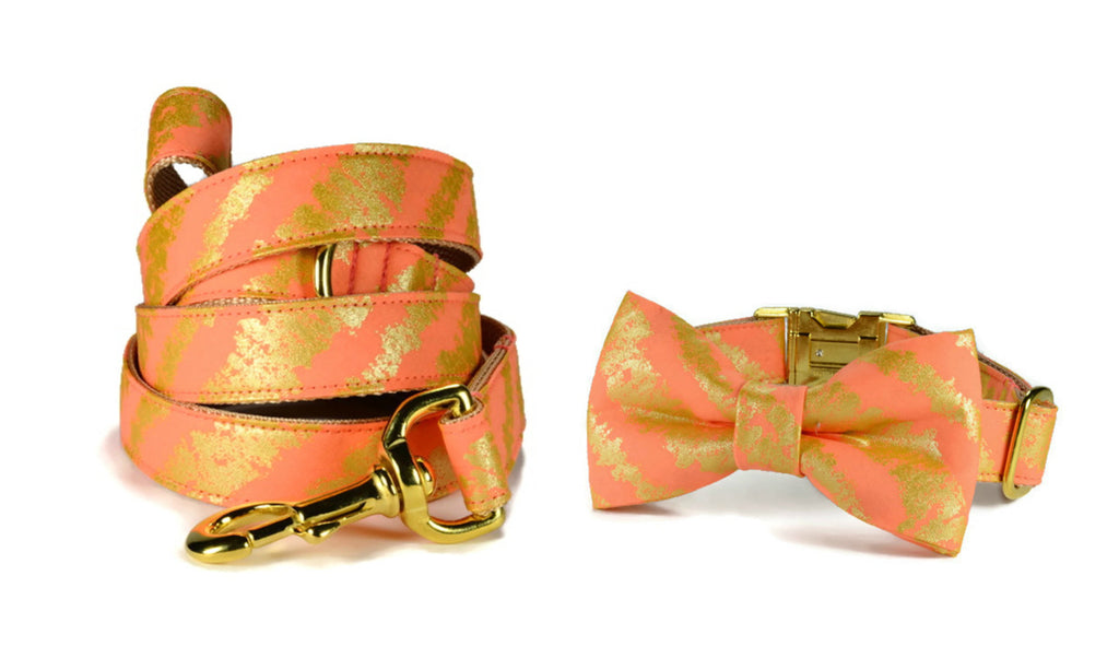 Coral Bliss Bow Tie Collar and Leash Set w/ Gold Hardware