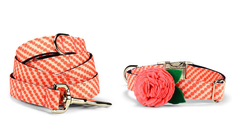 Coral Bubbles Bloom Collar and Leash Set w/ Coral Bloom