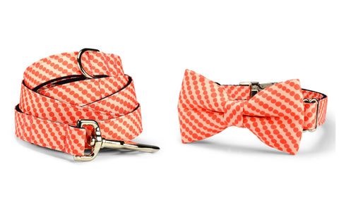 Coral Bubbles Bow Tie Collar and Leash Set