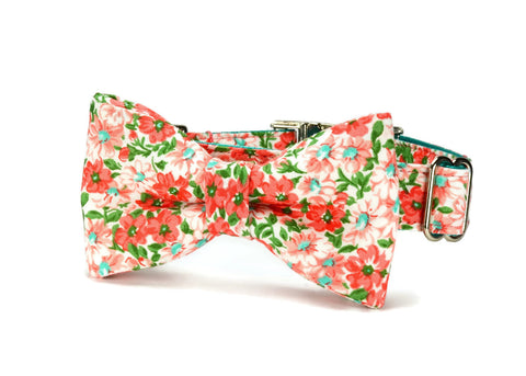 Coral Floral Bow Tie Dog Collar