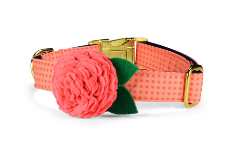 Coral Polka Dots Bloom Dog Collar w/ Coral Bloom and Gold Hardware