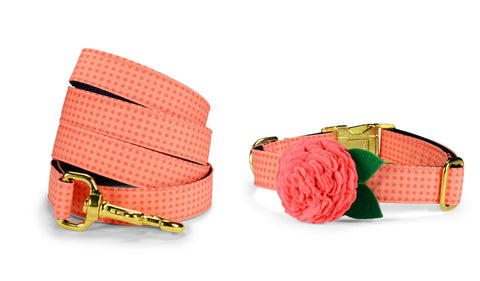 Coral Polka Dot Bloom Collar and Leash Set w/ Gold Hardware