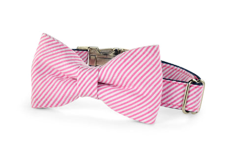 New! Pink Seersucker Bow Tie Dog Collar