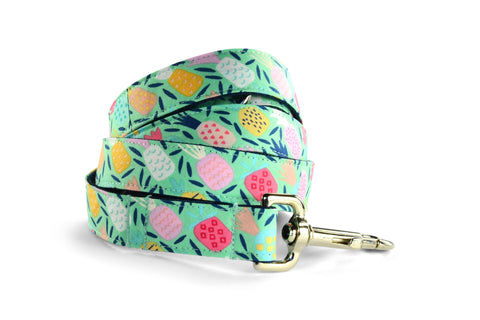 New! Juicy Pineapple Dog Leash