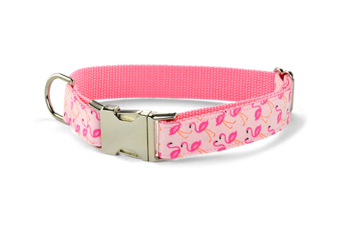 New! Pink Flamingo Dog Collar