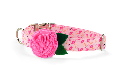 New! Pink Flamingo Bloom Dog Collar w/ Carnation Bloom