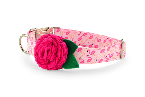 New! Pink Flamingo Bloom Dog Collar w/ Fuchsia Bloom