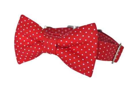 bow tie dog collar | red polka dot | bowtie