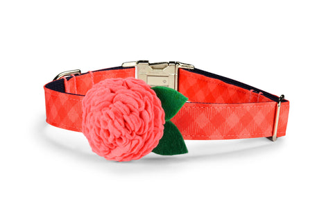 Dark Coral Gingham Bloom Dog Collar w/ Coral Bloom