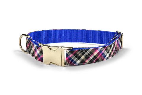 The Fairmont Dog Collar