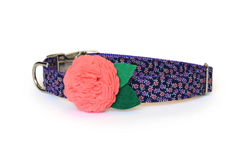 The Fiona Bloom Dog Collar w/ Coral Bloom