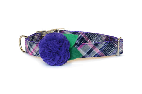 New! The Madison Bloom Dog Collar w/ Purple Bloom