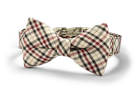 Furberry Bow Tie Collar and Leash Set