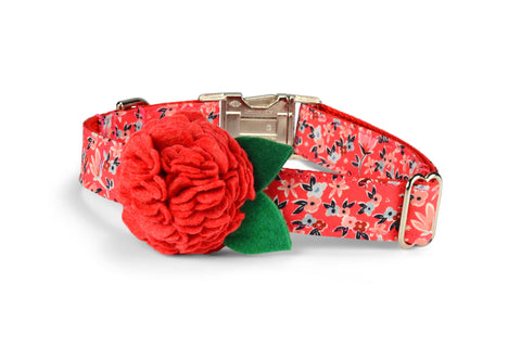 Garden Girl Bloom Dog Collar w/ Red Coral Bloom