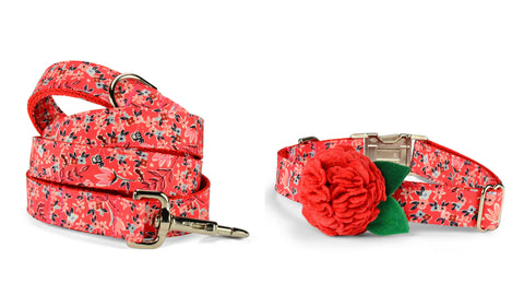Garden Girl Bloom Collar and Leash Set w/ Red Coral Bloom