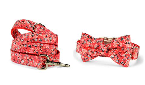 New! Garden Girl Bow Tie Collar and Leash Set