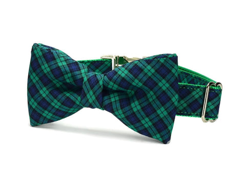 Green And Navy Plaid Bow Tie Dog Collar