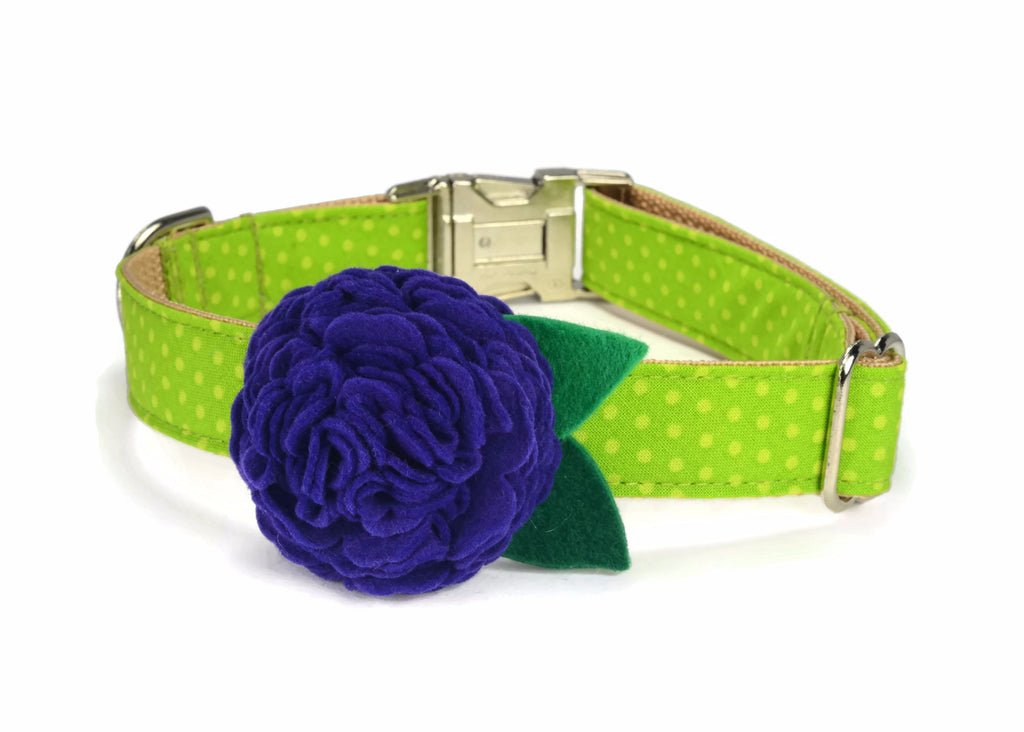 Green Polka Dot Bloom Dog Collar w/ Plum Bloom