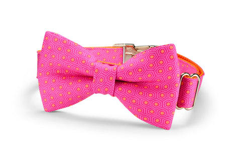 Pink And Orange Tortoise Shell Bow Tie Dog Collar